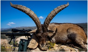 cf-Beceite-ibex-hunting-page